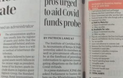 Accounting pros urged to aid Covid funds probe.